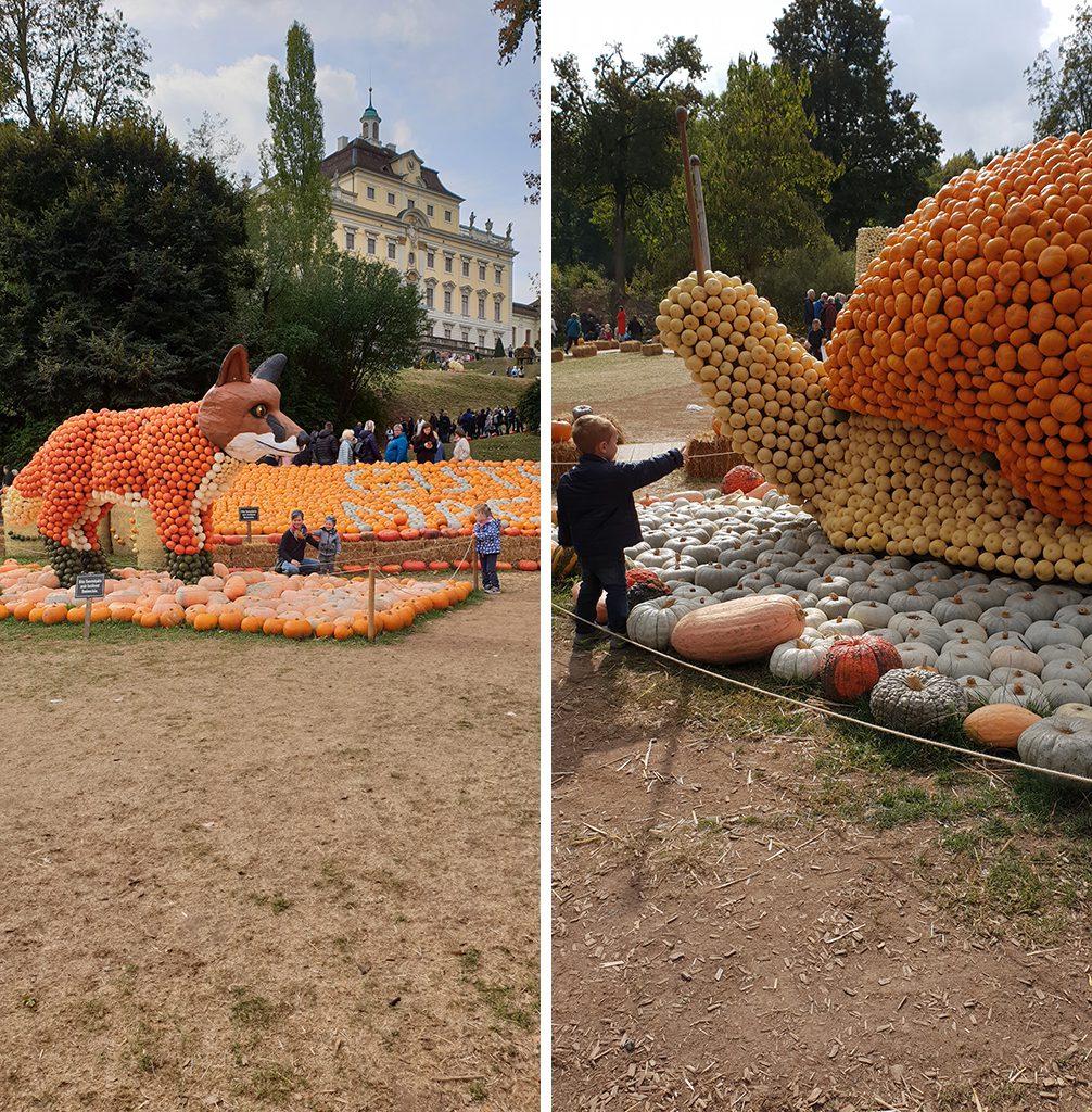 fuchs_schnecke_kuerbisausstellung